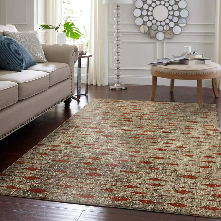 Dominica Dolce Gray  Orange Area Rug